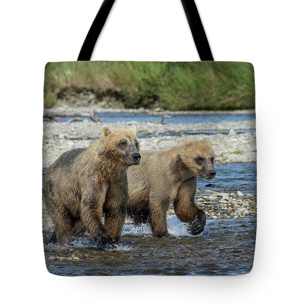 Cubs On The Prowl Tote Bag