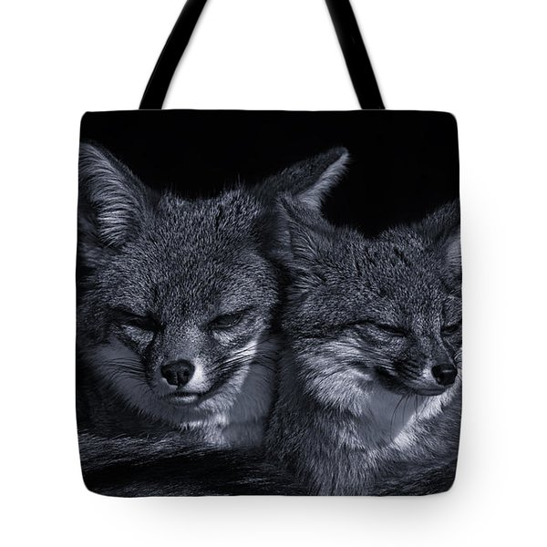 Cuddle Buddies  Tote Bag by Brian Cross