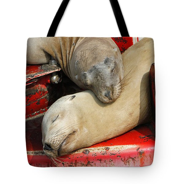 Cuddle Buddies  Tote Bag by Shoal Hollingsworth