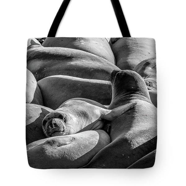 Cuddle Puddle Tote Bag