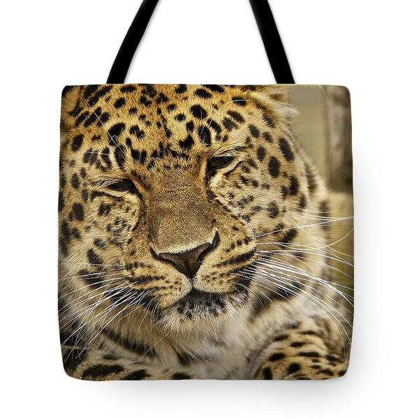 Tote Bag featuring the photograph Cuddles  by Gary Bridger