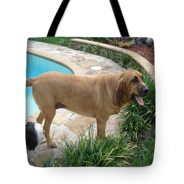 Cujo And Lucky By The Pool Tote Bag by Val Oconnor