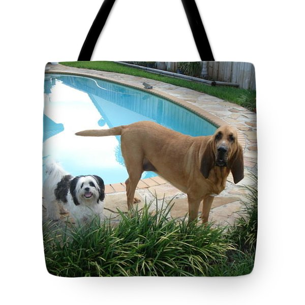 Cujo And Lucky Tote Bag by Val Oconnor