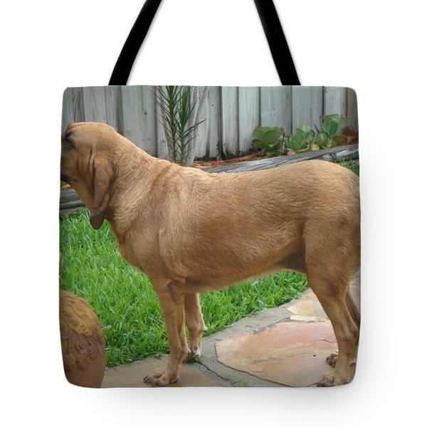 Cujo Getting A Scent Tote Bag by Val Oconnor