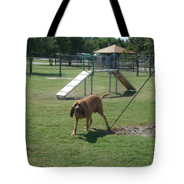 Cujo Running At The Park Tote Bag by Val Oconnor
