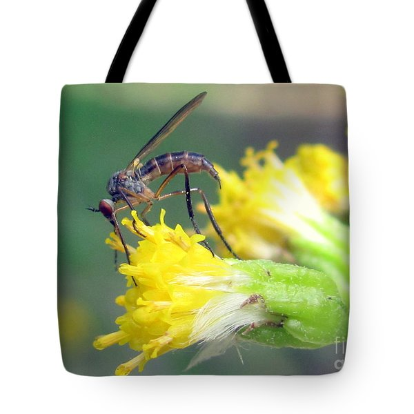 Culex Pipiens Tote Bag by Irina Hays