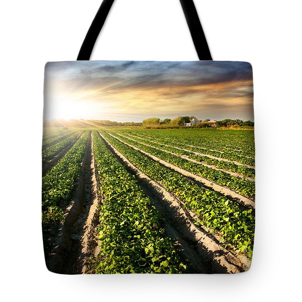 Cultivated Land Tote Bag