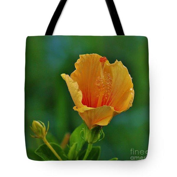 Cup Of Honey Tote Bag by Craig Wood