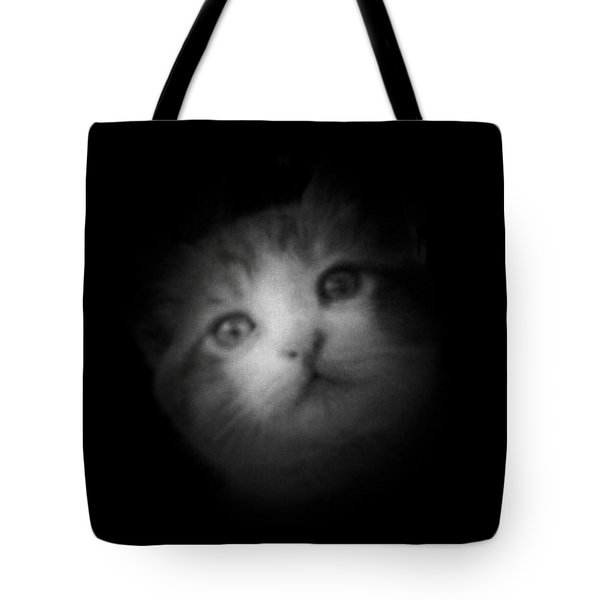 Tote Bag featuring the photograph Curiosity by Betty Northcutt