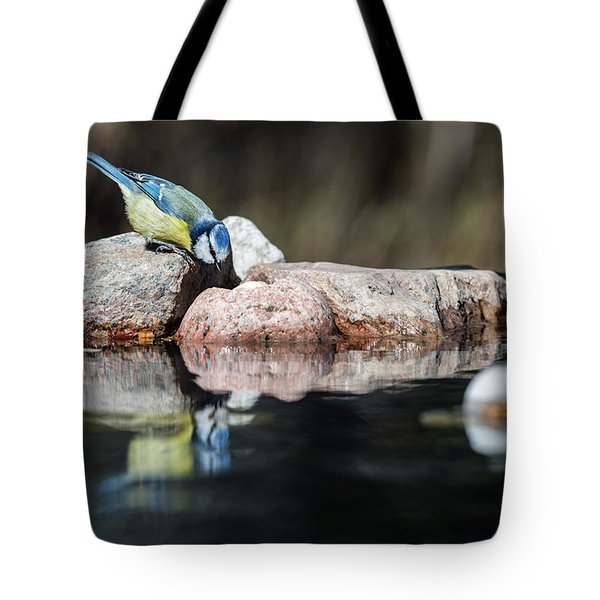 Curious Blue Tit Tote Bag by Torbjorn Swenelius