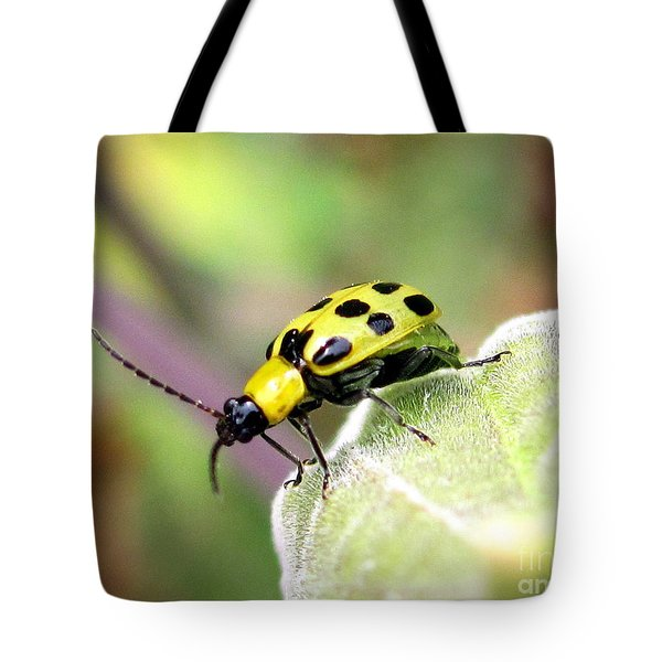 Tote Bag featuring the photograph Curious Bug by Irina Hays