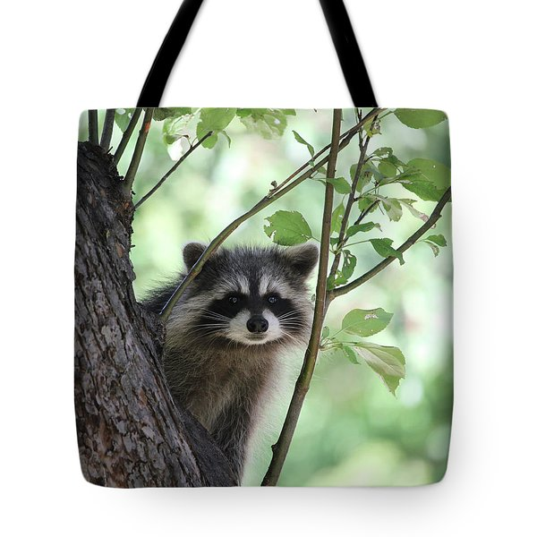 Curious But Cautious Tote Bag