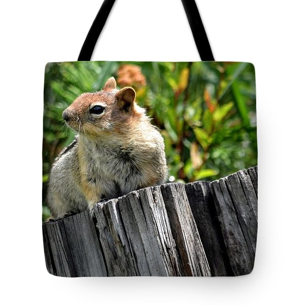 Curious Chipmunk Tote Bag