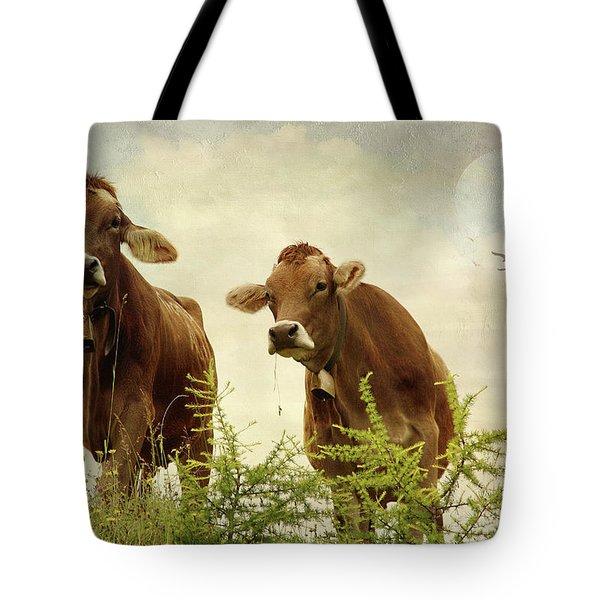 Curious Cows Tote Bag