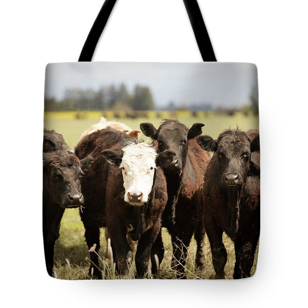 Tote Bag featuring the photograph Curious Cows by Rebecca Cozart