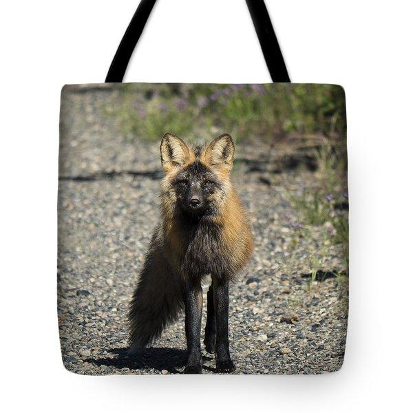 Curious Cross Tote Bag