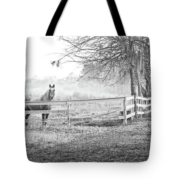 Curious Fog Tote Bag