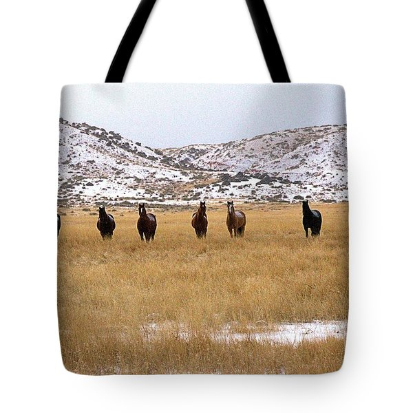 Curious Horses Tote Bag