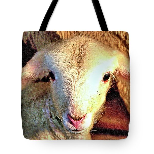 Curious Newborn Lamb Tote Bag