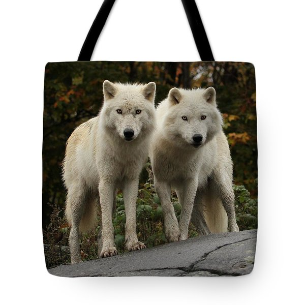 Curious Pair Tote Bag by Heather King