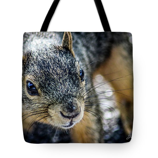 Tote Bag featuring the photograph Curious Squirrel by Joann Copeland-Paul