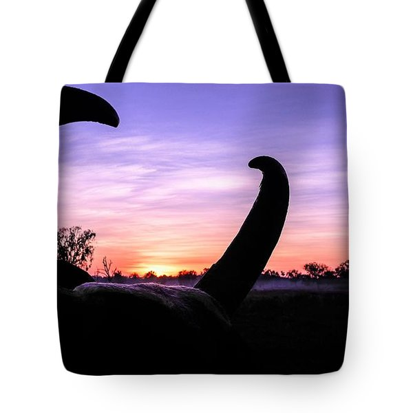 Curious Sunrise Tote Bag