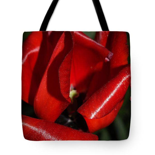 Curly Red Tulip Tote Bag