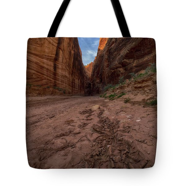 Curly Toes Tote Bag
