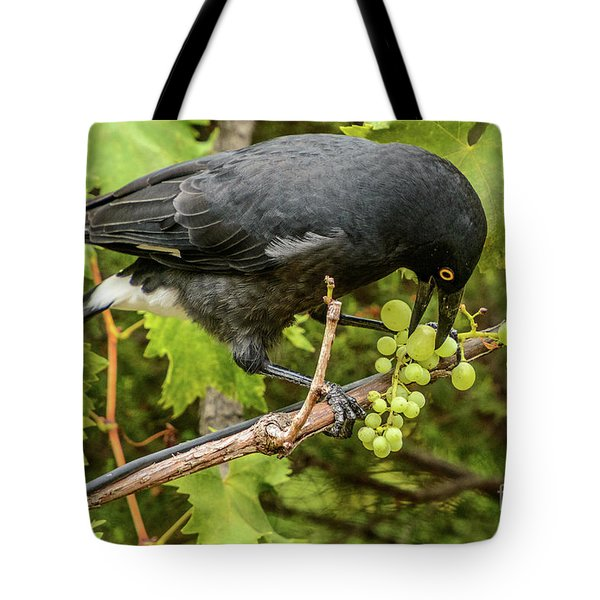 Currawong On A Vine Tote Bag