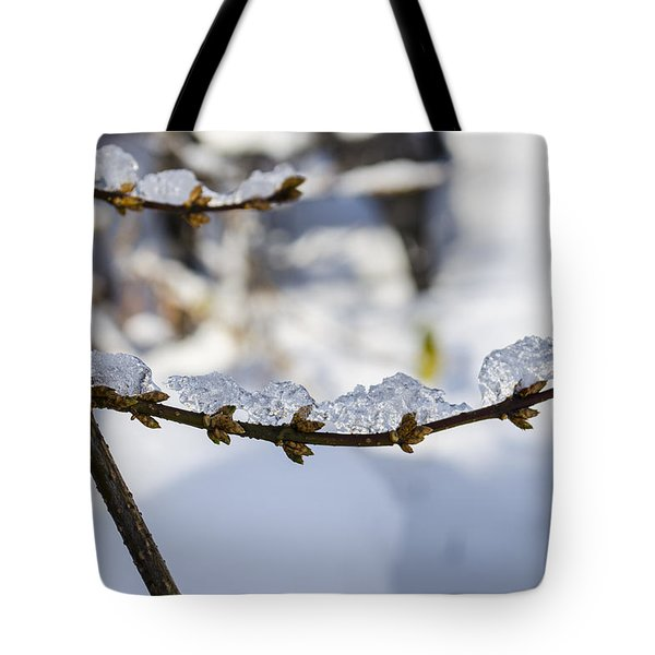 Curved Clumps Of Ice Tote Bag