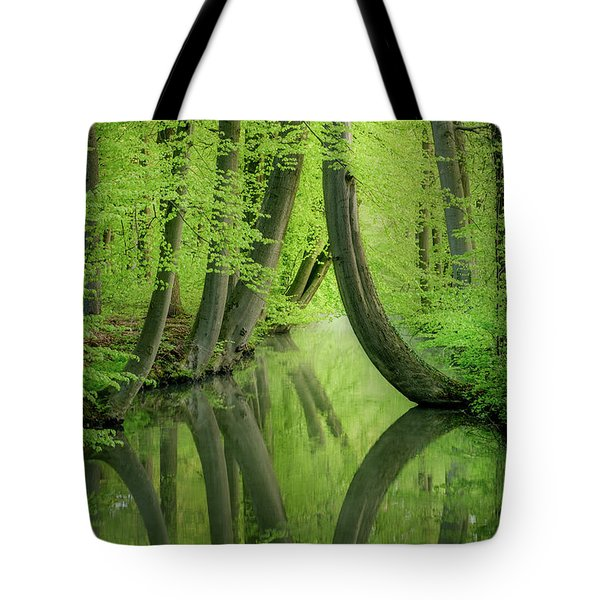 Curved Trees Tote Bag