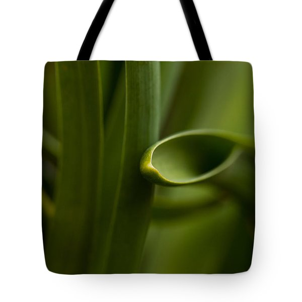 Curves Of Nature Tote Bag