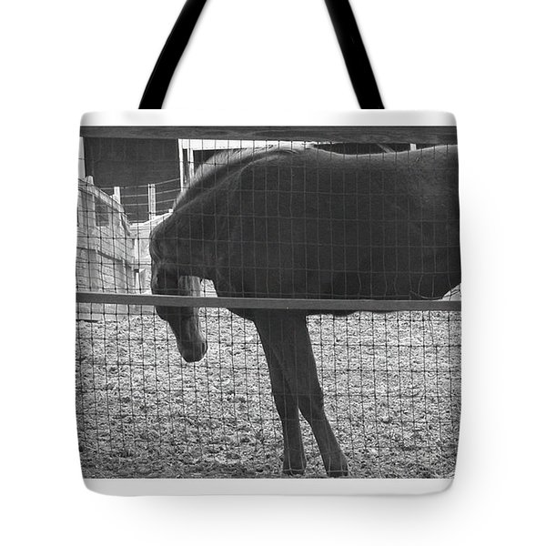 Curves Tote Bag by R Thomas Berner
