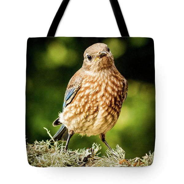 Cute Bluebird Adolescent Tote Bag