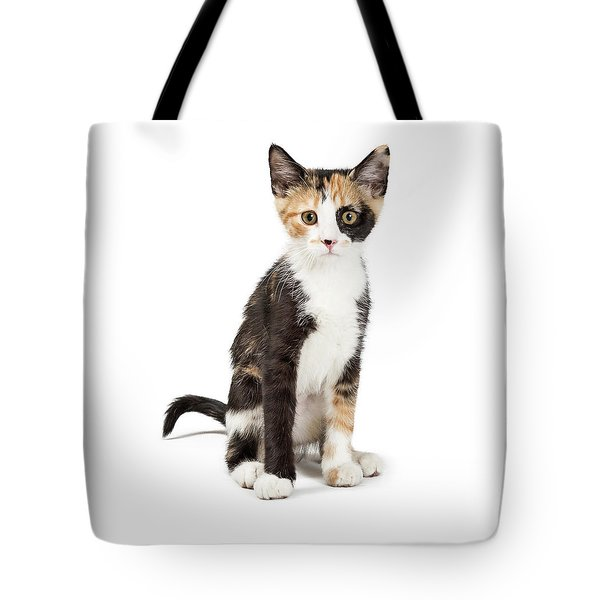 Cute Calico Kitten Sitting Looking Forward Isolated Tote Bag