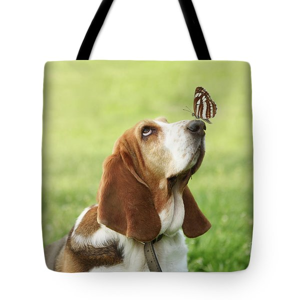 Cute Dog With Butterfly On His Nose Tote Bag