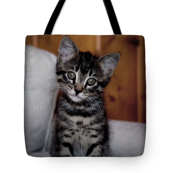 Tote Bag featuring the photograph Cute by Laura Melis