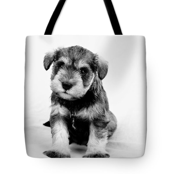 Tote Bag featuring the photograph Cute Puppy 1 by Serene Maisey