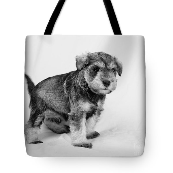 Tote Bag featuring the photograph Cute Puppy 2 by Serene Maisey