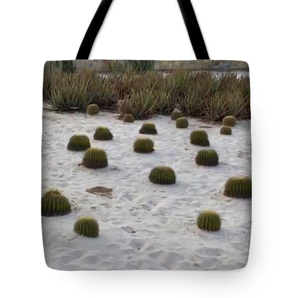 Tote Bag featuring the photograph Cute Untouchables by Cindy Charles Ouellette