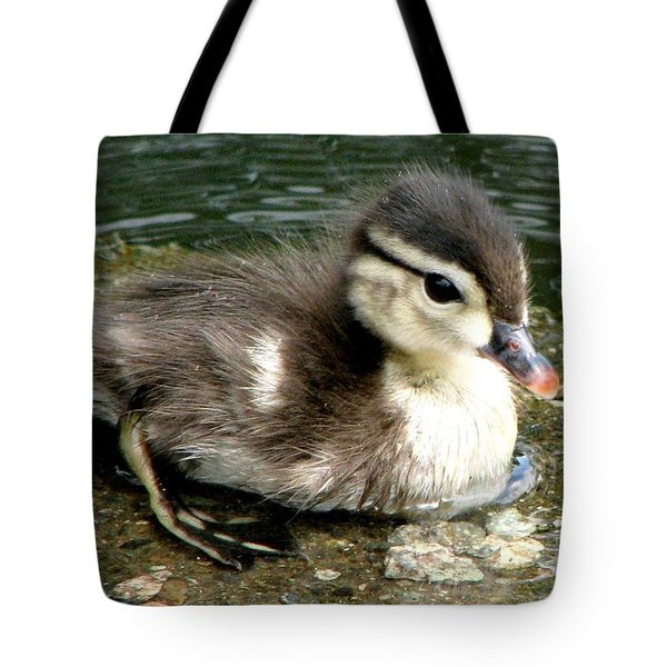 Cute Woody Tote Bag