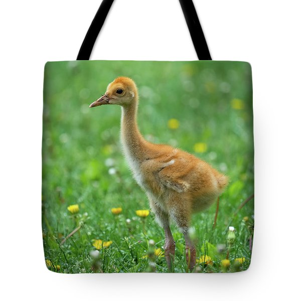 Cuteness Tote Bag