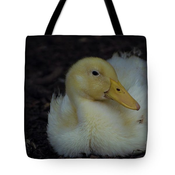 Cutie Tote Bag by Donna Brown