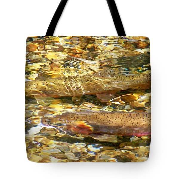 Cutthroat Trout In Clear Mountain Stream Tote Bag by Greg Hammond