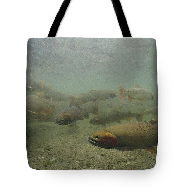 Cutthroat Trout Swim Tote Bag by Michael S. Quinton