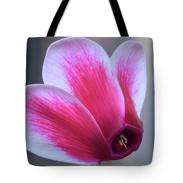 Tote Bag featuring the photograph Cyclamen Portrait. by Terence Davis