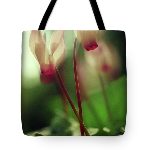 Cyclamens Tote Bag