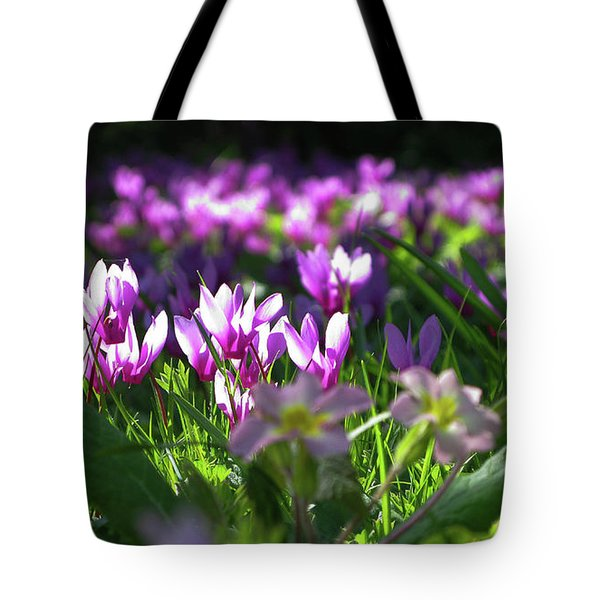 Cyclamens Tote Bag by Maria Joy