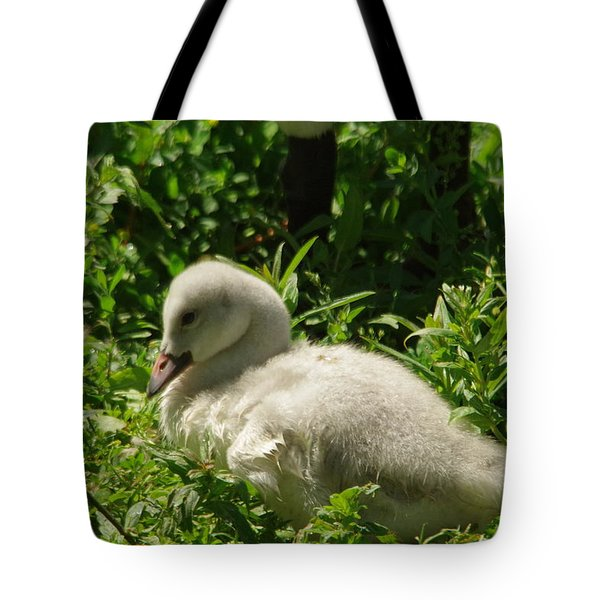 Cygent Getting Ready To Nap Tote Bag