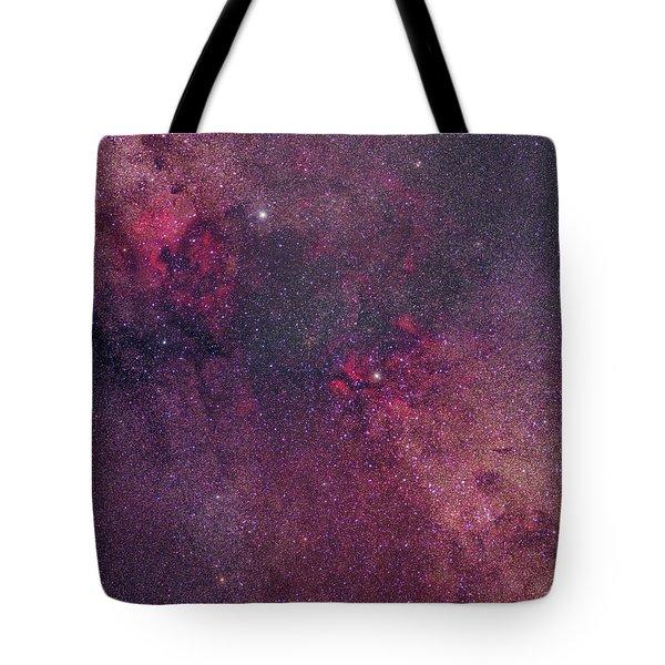 Cygnus Tote Bag by Dennis Bucklin